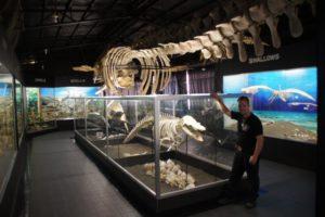 Bone Collector Museum Davao Philippines